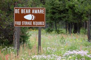 Be bear aware